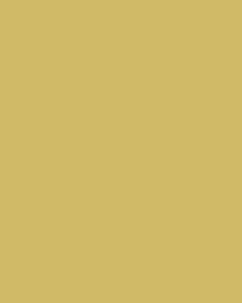 BAUMIT Silikatová omítka Baumit Silikattop 3,0 mm 25kg – odstín 0123