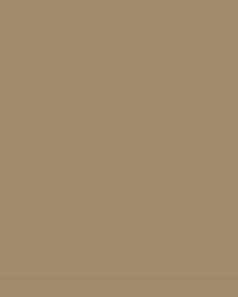 BAUMIT Silikatová omítka Baumit Silikattop 3,0 mm 25kg – odstín 0183