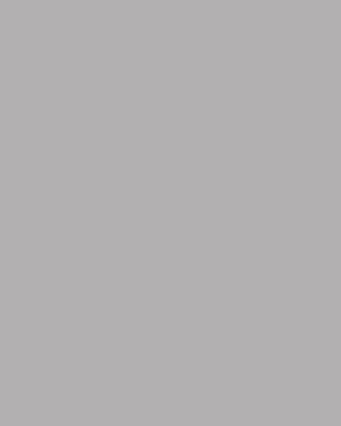 BAUMIT Silikatová omítka Baumit Silikattop 3,0 mm 25kg – odstín 0906