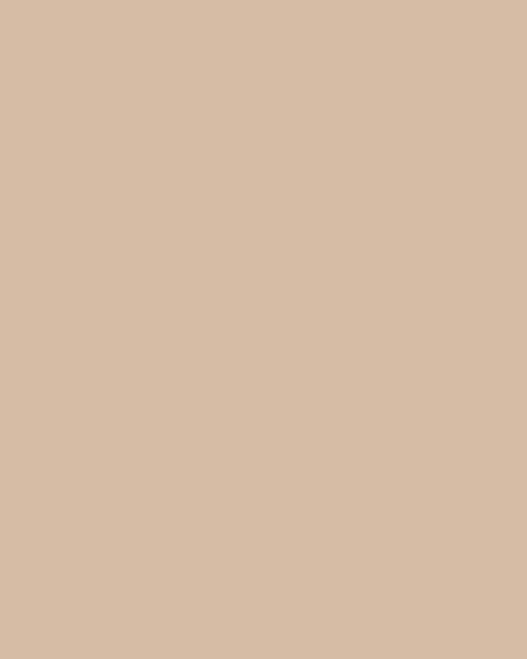 BAUMIT Silikonová omítka Baumit Silikontop 1,5 mm 25 kg – odstín 0366