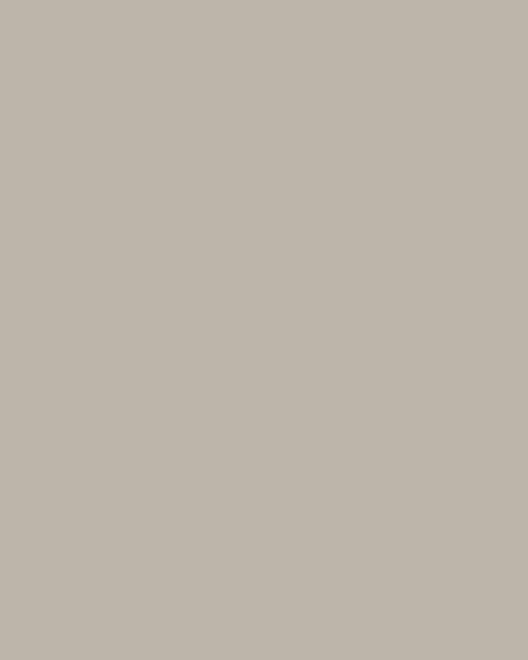 BAUMIT Silikonová omítka Baumit Silikontop 2,0 mm 25 kg – odstín 0014
