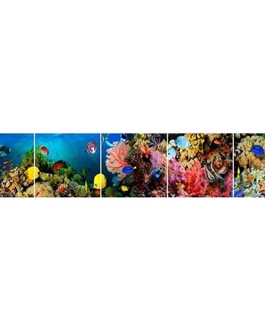 Skleněný panel 60/300 Aquarium-1 5-Elem
