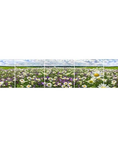 Skleněný panel 60/300 Flowers-3 5-Elem