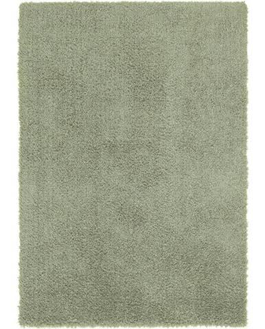 Shaggy Koberec Stefan 2, 120/170cm, Zelená