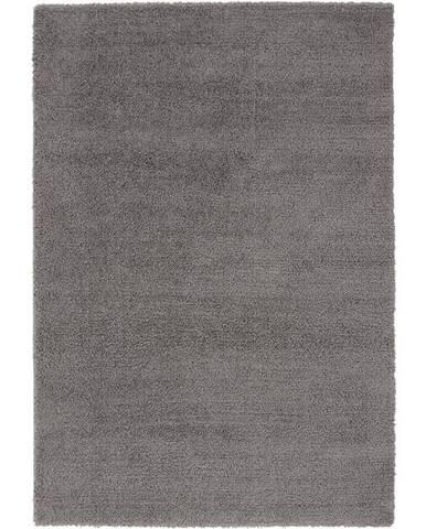 Shaggy Koberec Stefan 3, 160/230cm, Tm.šedá