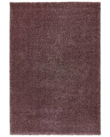 Tkaný Koberec Rubin 2, 120/170cm, Fialová