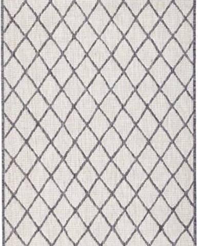 Šedo-krémový venkovní koberec Bougari Malaga, 80x350 cm