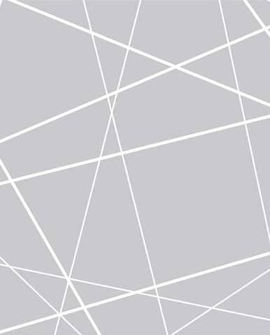 Velkoformátová tapeta Artgeist Modern Cobweb,400x280cm