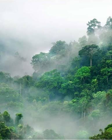 Velkoformátová tapeta Artgeist Morning Fog,200x140cm