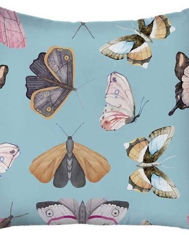 Modrý povlak na polštář Mike& Co. NEW YORK Butterflies,43x43cm