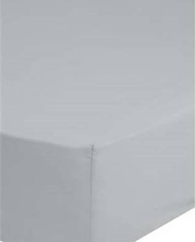 Šedé bavlněné elastické prostěradlo Good Morning,160x200cm