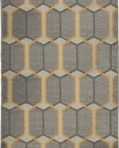 Šedý koberec Flair Rugs Urban Trellis, 200 x 275 cm
