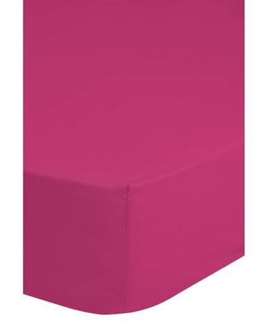 Elastické Prostěradlo Jersey Ca. 90x220cm